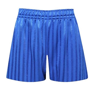St Johns Mosley Common Primary School Blue P.E. Shorts - with free initials